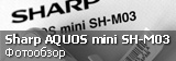Обзор Sharp Aquos mini SH-M03
